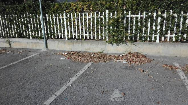 vadino pulizia strade