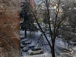 carcare neve