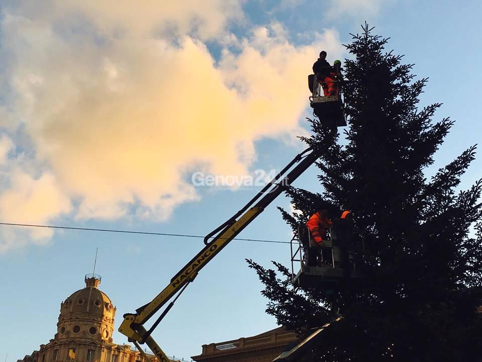montaggio albero natale de ferrari