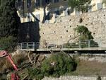 pietra albero caduto via cornice