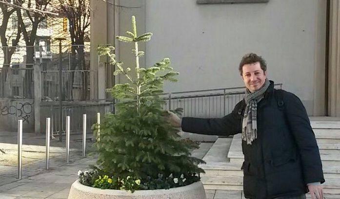 venturelli albero