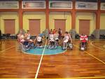Basket in carrozzina
