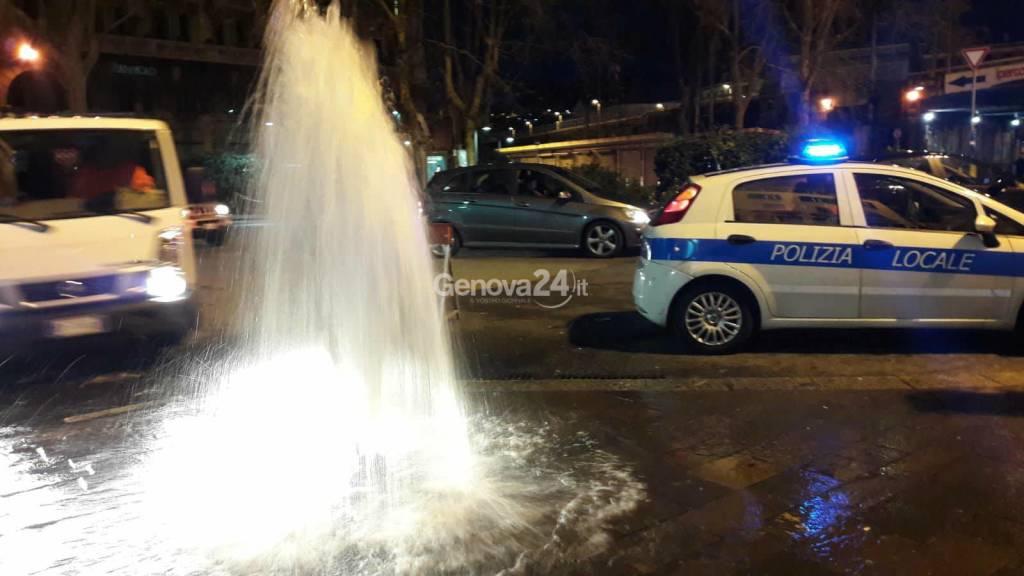 geyser piazza vittorio veneto