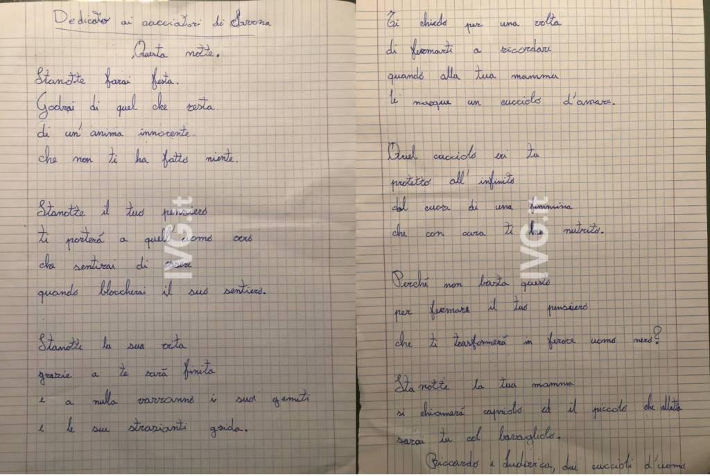 Poesia Cacciatori Caprioli
