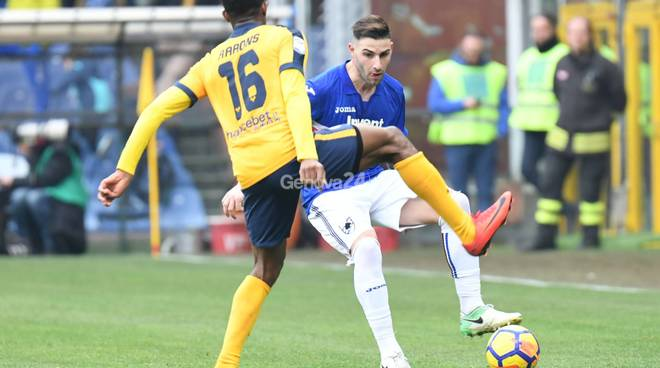 Sampdoria Vs Verona  Serie A 24° Giornata