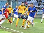 Sampdoria Vs Verona  Serie A 24° Giornata