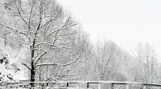 Val Trebbia lo spettacolo della neve il giorno dopo la nevicata