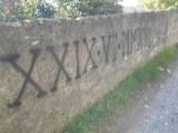 vandalismo albenga