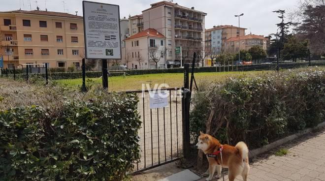 Area cani viale Pontelungo chiusa