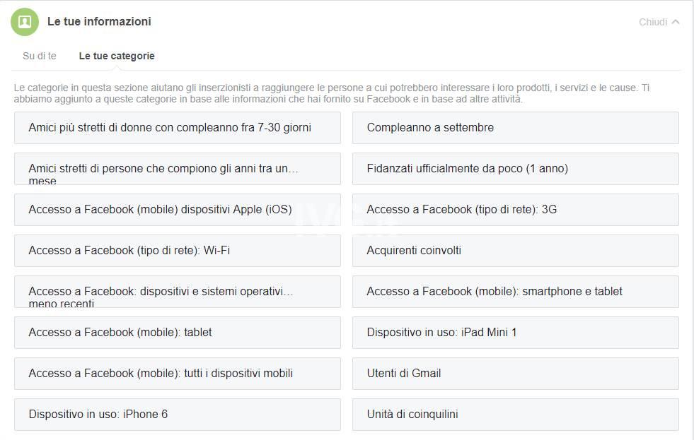 Privacy nella Rete: un\'utopia digitale - Facebook