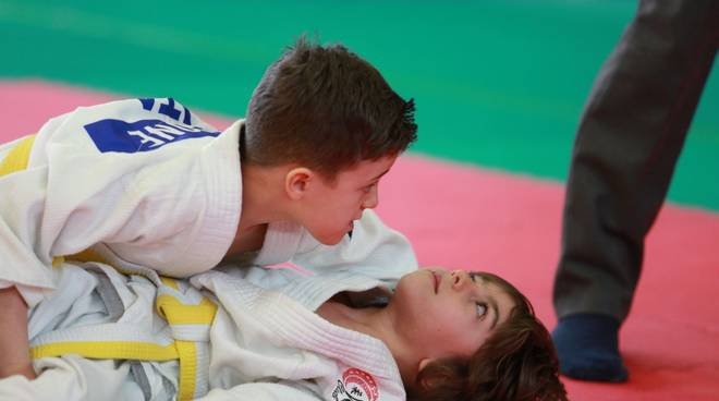 Tigers Gym Team Judo