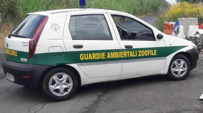 Anta Liguria