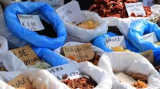 A Savona torna il Mercato Riviera delle Palme