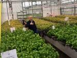 Al Cersaa di Albenga un convegno sull'agricoltura di precisione
