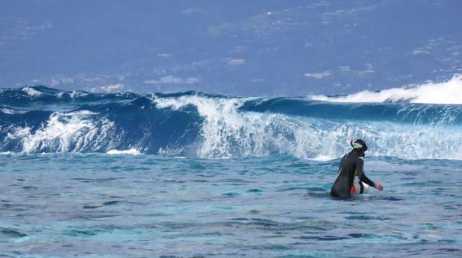 Un ricercatore cerca di raggiungere la parte esterna della barriera corallina per posizionare i sensori di misura.