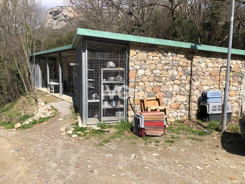 Canile di Finale Ligure, due anni nella nuova struttura