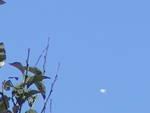 UFO-Celle Ligure oggetto non identificato