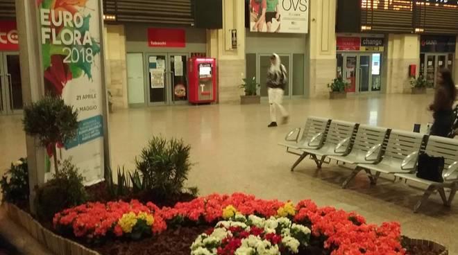 euroflora nelle stazioni