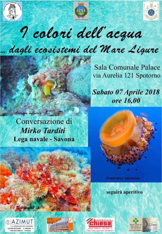 """""""I colori del mare... dagli ecosistemi del Mar Ligure"""""""