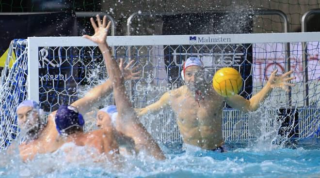 Pro Recco Vs Szolnoki Campions League Waterpolo