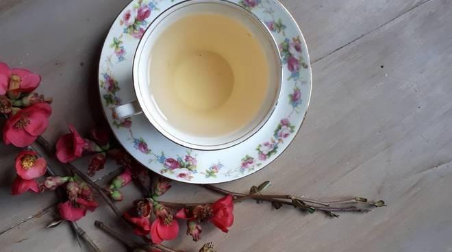 Un tè in un giardino d\'oriente