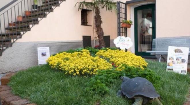 Ufficio Turismo In Alassio : Affitto alassio uffici in affitto a alassio mitula case