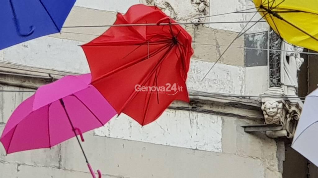Ombrelli rotti