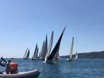 Portofino's Week