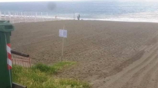 pulizia spiagge savona