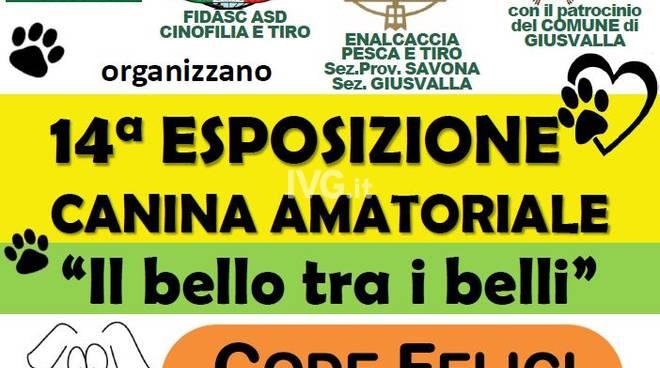 """14a esposizione canina amatoriale \""""Il bello tra i belli\"""""""