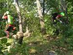 Fungaiolo Scomparso Soccorso Alpino Disperso Boschi Ricerche
