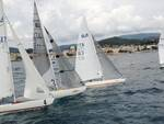 regata zonale della classe paralimpica 2.4