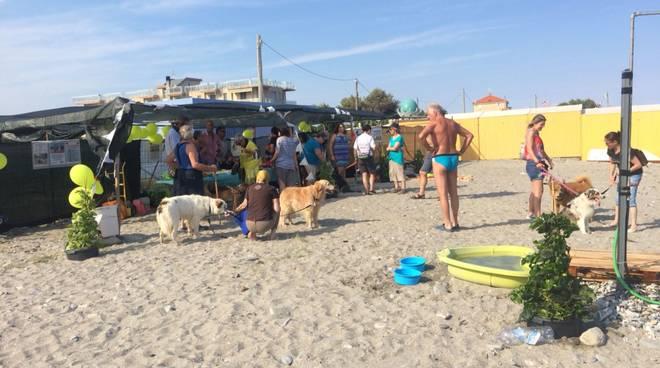 spiaggia cani vadino