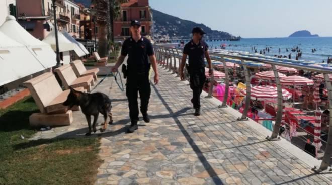 alassio controlli budello carabinieri cani cinofili