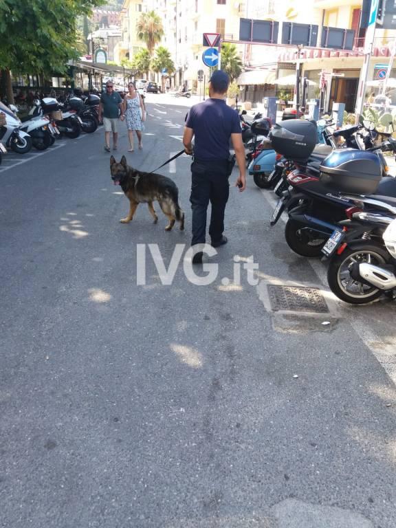 Alassio, proseguono i controlli dei carabinieri con l'ausilio del nucleo cinofili di Villanova