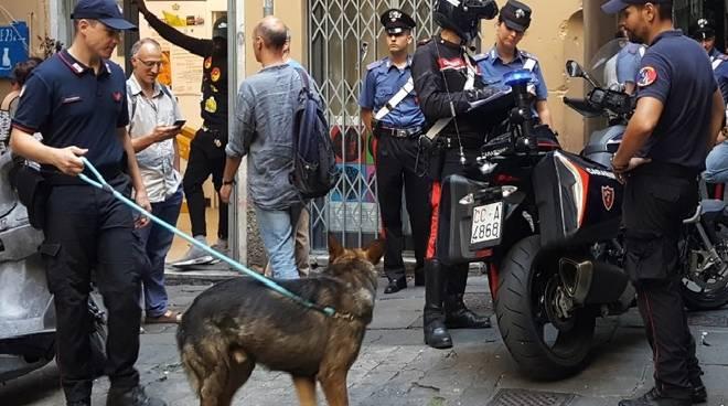 carabinieri, unità cinofile