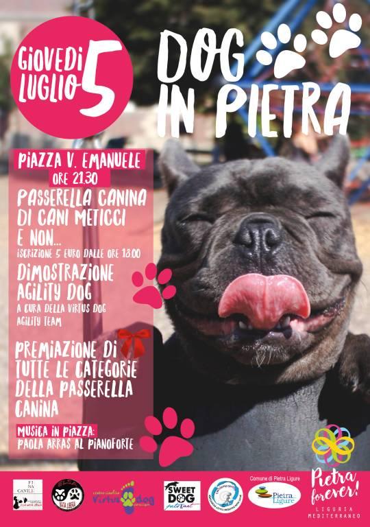 """Dog in Pietra"" 2018"