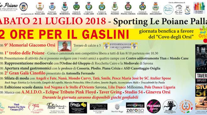 """Giornata di beneficenza """"12 ore per il Gaslini"""" Pallare"""
