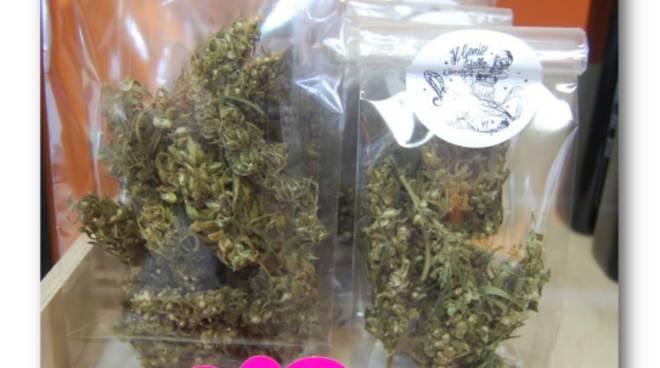 Indagine per droga a Carcare