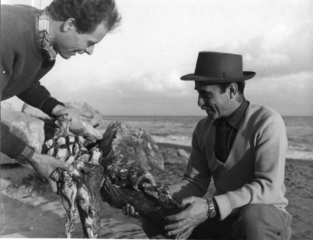 Mostra Nascita della Materia. Lucio Fontana e Albisola