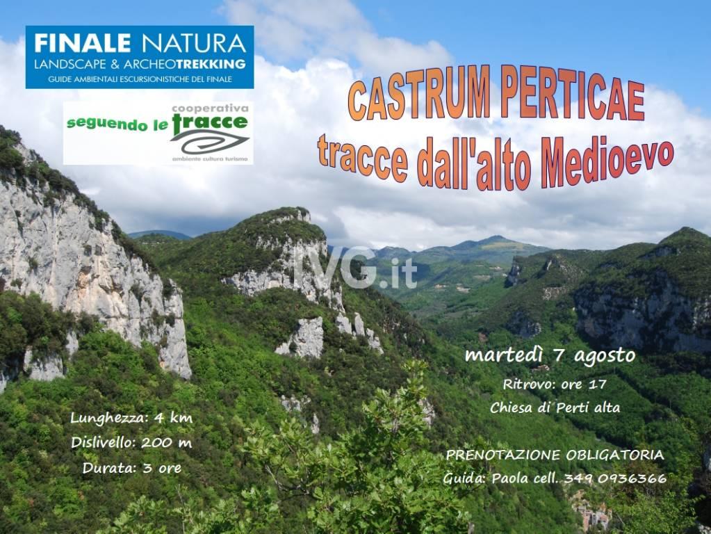 Castrum Perticae