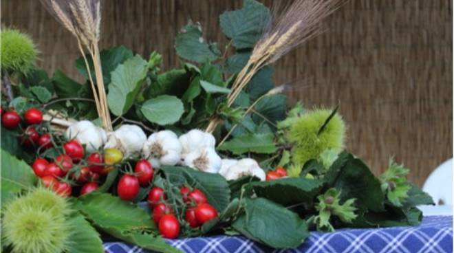 aglio vessalico pomodori rosmarino erbe selvatiche lazarene