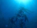 Snorkeling naturalistico Loano