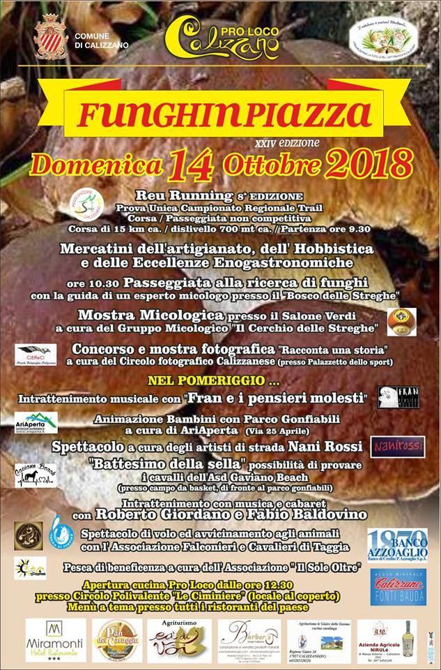 Funghi in Piazza 2018 Calizzano