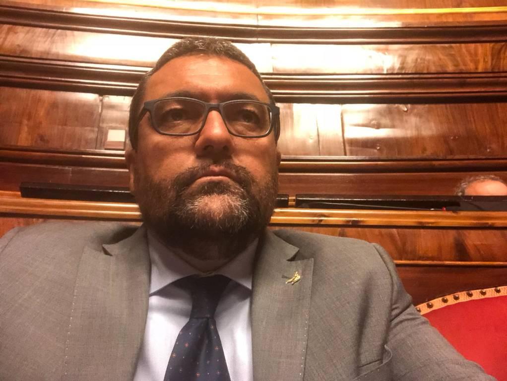 Paolo Ripamonti Senato