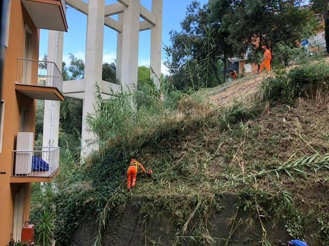 Viadotto Teiro Sfalcio Verde