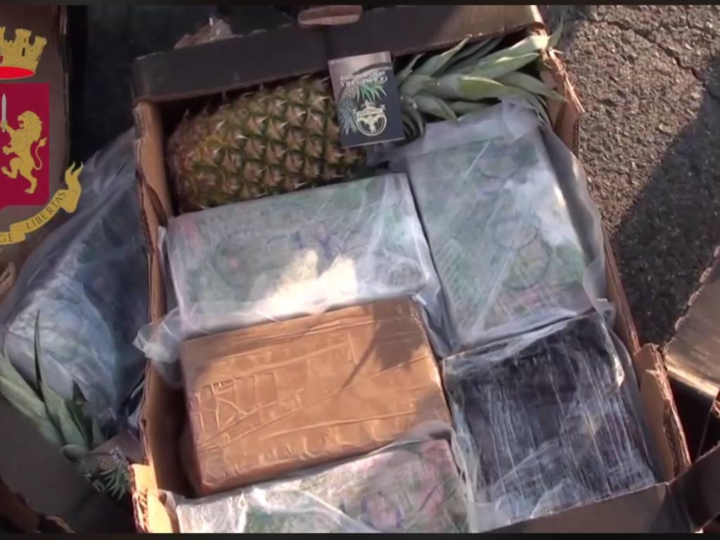 cocaina ananas