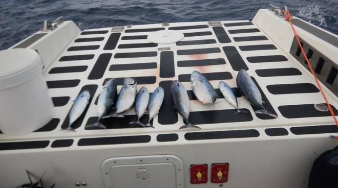 sanzioni pescatori
