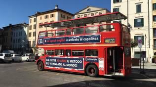 wall street english london bus regina elisabetta