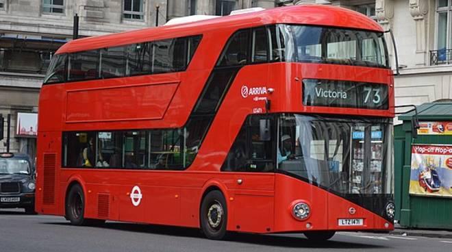 Bus Forzano